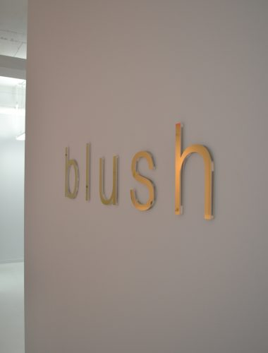 blush lingerie clear acrylic letters with metal laminate face